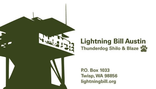 Lightning Bill business card front