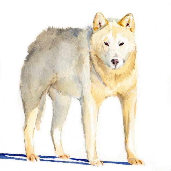 standingdog