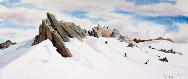 "Chinstrap Penguins, 6.5"" x 15"" field watercolor"