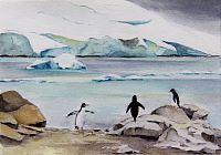 Paradise Penguins II
