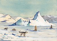 Kullorsuaq Sled Dogs